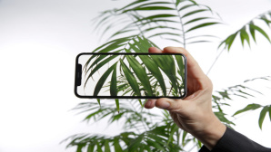 Apple iPhone X mit All?Screen-Design ©COMPUTER BILD