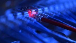 Netzwerkkabel ©dpa-Bildfunk