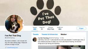 I've-Pet-That-Dog-Account © Screenshot via Twitter https://twitter.com/IvePetThatDog/media