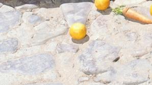 Zitrone ©Javier Pierini/gettyimages