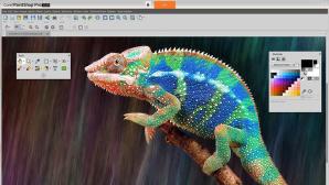 Corel PaintShop Pro 2019: Bildbearbeitungsfenster©Corel