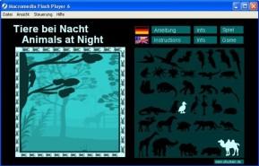 Tiere bei Nacht
