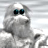 Icon - Yetisports Part 1 � Pingu Throw