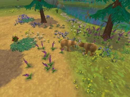 Simulation Sim Animals: B�ren