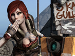 Borderlands: Mad Max trifft Diablo