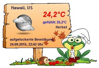 Screenshot 2 - Wetterfroschi