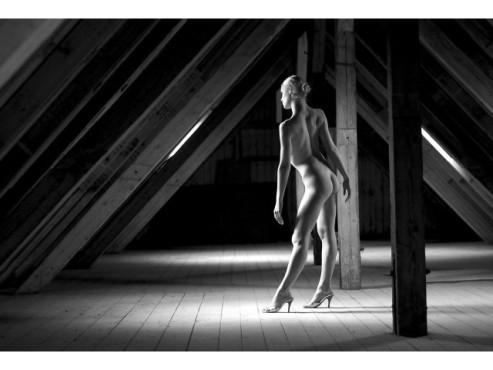 Bildergalerie:  Die 100 schönsten Akt-Bilder ©thomasidesign