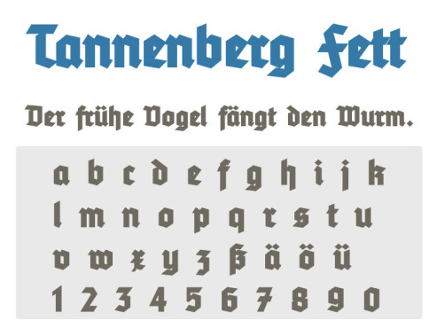 Tannenberg Fett ©COMPUTER BILD