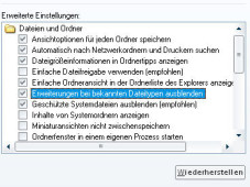 Spionage-Stopper Fehler: Der Firefox 3 fügt teilweise der System-Datei die Endung .txt hinzu.