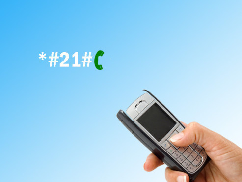 Handycodes: individuelle Rufumleitung �berpr�fen ©majivecka, Laschi - Fotolia.com