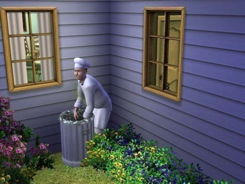 Lebenssimulation Die Sims 3: Müll