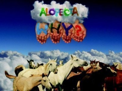 CD-Cover: Why? – Alopecia