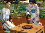 Die Sims 3: Add-on angek�ndigt