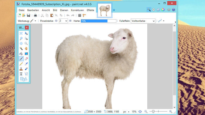 Paint.NET: Bilder umfangreich bearbeiten © Fotolia--inna_astakhova-sheep isolated on white