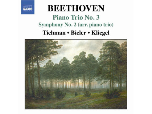 CD-Cover: Xyrion Trio - Beethoven: Piano Trios Vol. 3