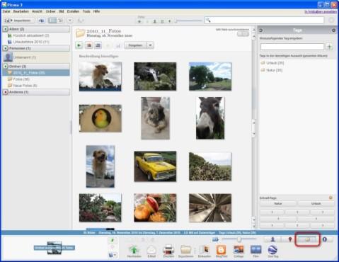 Picasa: Tags setzen, um Bilder schnell wiederzufinden