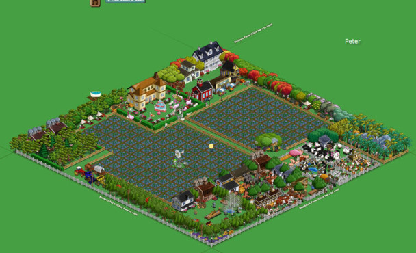 Browserspiel Farmville: Hof 6