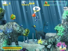 """Little Piranha: Begleiten Sie den kleinen Engelsfisch """"Sunny"""" durch eine bunte Meereswelt!"""