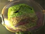 Geschicklichkeitsspiel Little Big Planet 2©Sony