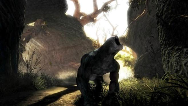 Lara 2010: Risen