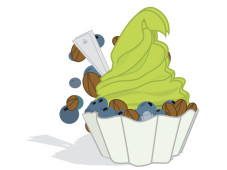 Google Android 2.2 Froyo © Google