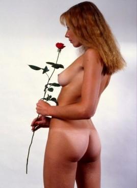Bild: Die Rose – von: wr-image ©Bild: Die Rose – von: wr-image