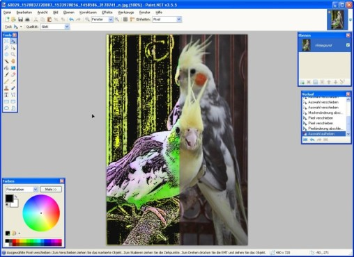 Paint.NET: Digitalbilder bearbeiten