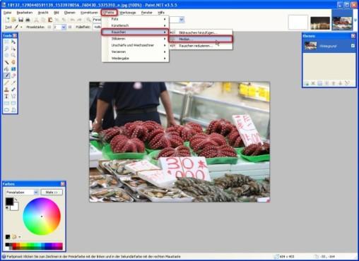 Paint.NET: Bilder verrauschen