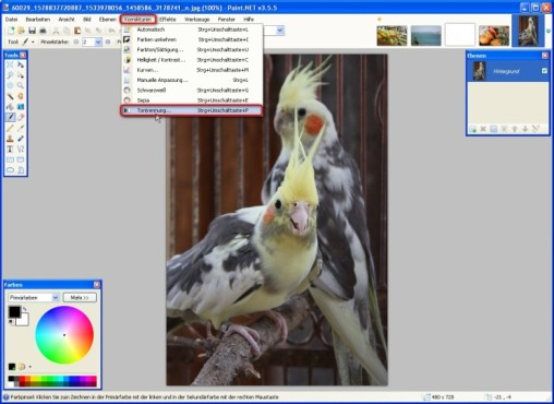 Paint.NET: Farbtiefe verändern
