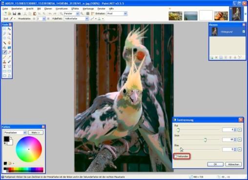 Paint.NET: Paint.NET: Neue Farbtiefe einzeln festlegen