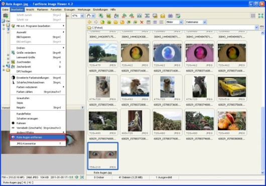 FastStone Image Viewer: Rote Augen retuschieren