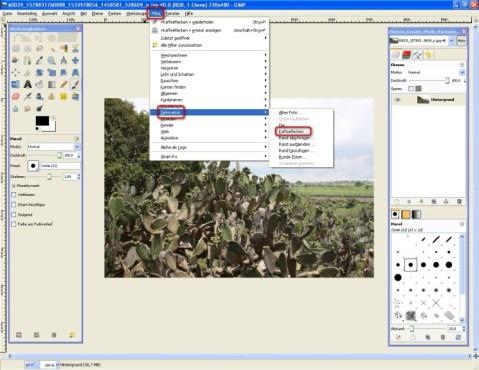 GIMP: Kaffeeflecken einfügen