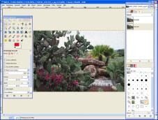 """GIMP: Mit """"GIMP"""" bearbeiten Sie Bilder auf Profi-Niveau."""
