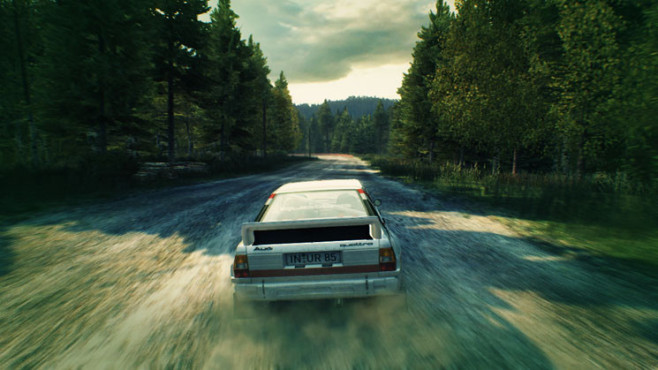 Rennspiel Dirt 3: Wald © Codemasters