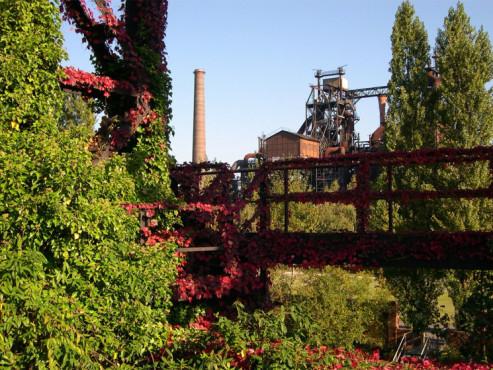 Die Natur erholt sich wieder - von: CzeslawD ©Die Natur erholt sich wieder - von: CzeslawD