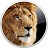 Icon - Lion Wiederherstellungsvolume-Assistent (Mac)