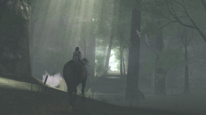 Actionspiel Shadow of the Colossus © Sony