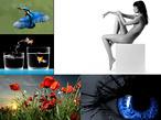 Die 100 beliebtesten Wallpaper-Motive ©Erstellt von den computerbild.de-Nutzern x4711x, joefreifoto, blustar und 2x sinnlichefotos