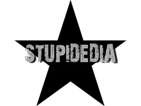 Logo Stupidedia ©COMPUTER BILD