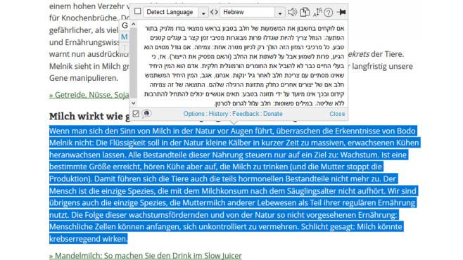 ImTranslator für Firefox ©COMPUTER BILD