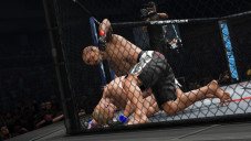 UFC Undisputed 3 ©THQ
