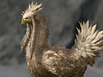 Bossguide Final Fantasy 13-2: Chocobo © Square Enix