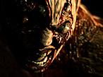 Actionspiel Resident Evil 5: Zombie©Capcom