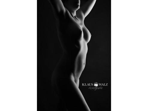 Lichtsaum – von: Klaus-walz ©Klaus-walz