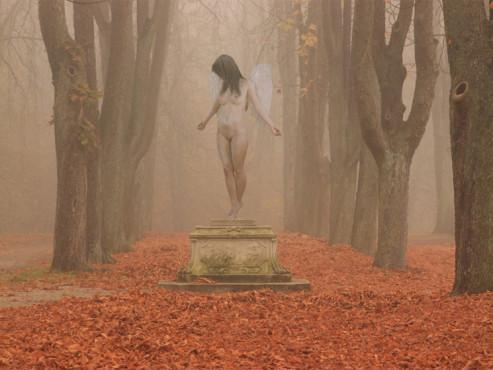 Wald-Engelchen – von: kontos ©kontos