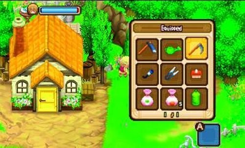 Rollenspiel Harvest Moon – The Tale of Two Towns: Haus © dtp
