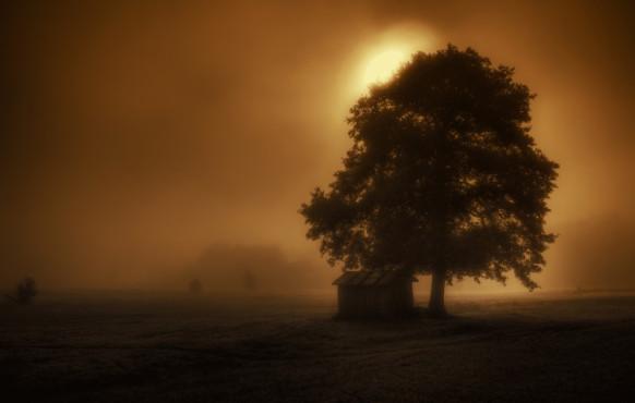 Es wird Herbst – von: leander72 ©leander72