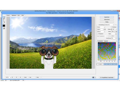 Speichermöglichkeiten ©Landschaft: mradlgruber – Fotolia.com; Hund: javier brosch – Fotolia.com; COMPUTER BILD