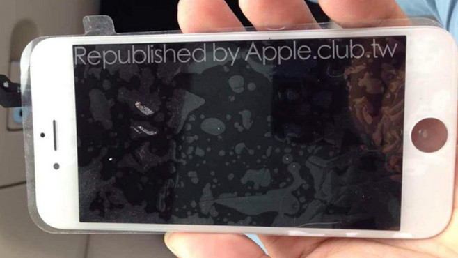 iPhone 6: Frontseite © apple.club.tw