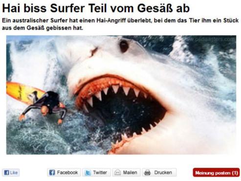 Angriff des Riesenhais ©psdisasters.com